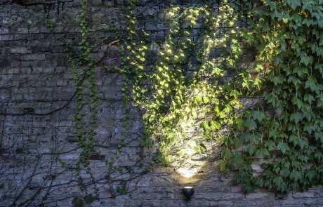 IP44 Outside Lighting | Wand- und Bodenleuchte SHOT | Leuchten Lukassen
